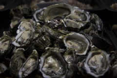 Coffin-Bay-Oysters