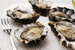 Lease-65-Oysters